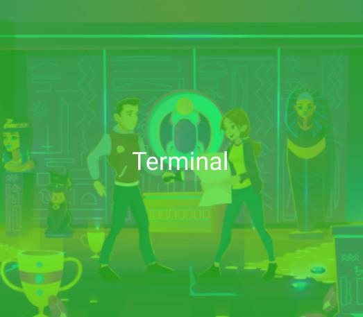 Terminal in CoD: Modern Warfare 2