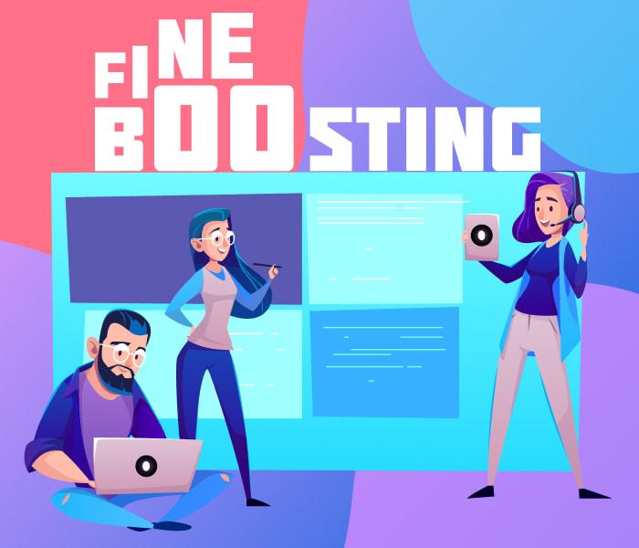 fineboosting service